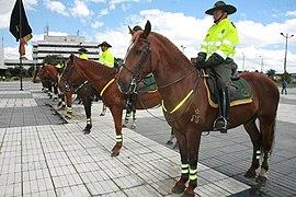 Carabineros de la Policía Nacional de Colombia (5513235089).jpg