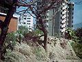Caribe y Caraballeda diciembre 2000 001.jpg