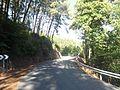 Carretera AV-924.JPG