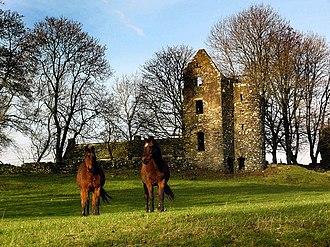 Old Luce - Image: Carscreugh Castle geograph.org.uk 619349