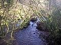 Castle Ely Stream, Llanteg - geograph.org.uk - 1058853.jpg