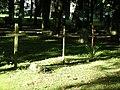 Cemetery in Brętowo - panoramio - Sławek Zawadzki (14).jpg