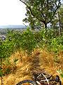 Cerro Condell, sendero 18 (16785884911).jpg