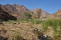 Cestou ke křováckým malbám White Lady, pohoří Brandberg - Namibie - panoramio.jpg