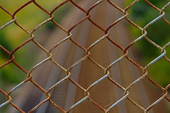 English: A pice of chain link fence over some ...
