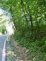 Chemin de Senneville 01.JPG