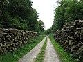 Chemin de la Noire Vallée - panoramio.jpg