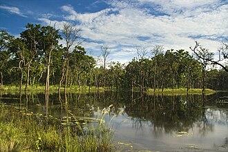 Chitwan National Park - Bishazari Tal in Chitwan National Park
