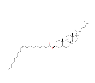Cholesteryl ester - Cholesterol Oleate, a member of the cholesteryl ester family