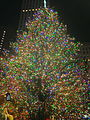 Christmas Tree at Rockefeller Center.jpg