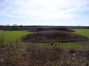 Kincaid Mounds State Historic Site - A photo of the Kincaid Site showing (clockwise from left) mounds 7, 8, and 9