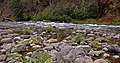 Clackamas Wild and Scenic River (27727570740).jpg