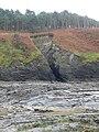 Cliffs and wave-cut platforms at Clarach - geograph.org.uk - 2154936.jpg