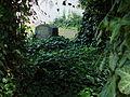 Cmentarz ewangelicko-augsburski w Częstochowie 1858 ------------- Ulica Świętego Rocha ------- 17.JPG