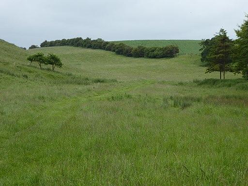 Cockthorpe Common, Stiffkey 2