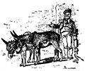 Collodi - Le avventure di Pinocchio, Bemporad, 1892 (page 186 crop).jpg