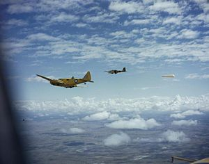 Ernest Lucas Guest - Allied pilots training over Southern Rhodesia in 1943