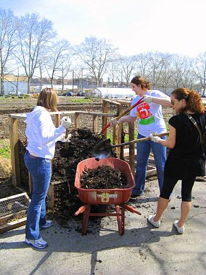 Three women loading compost into a wheelbarrow...