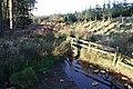 Coneloch Burn - geograph.org.uk - 399820.jpg