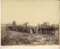 Confederate prisoners Fairfax.png
