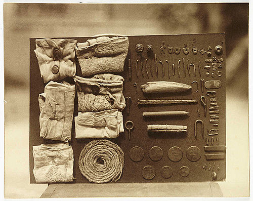 Contents of an Ostrich's stomach - Photo by Frederick Willam Bond.jpg