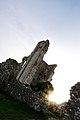 Corfe Castle in Sihouette.JPG