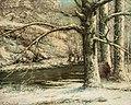 Courbet - Paysage de neige, A0189K.jpg