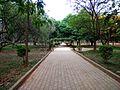 Cubbon Park2.jpg