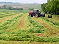 Cut Grass at Westertoun Farm - geograph.org.uk - 453074.jpg