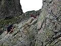 Czerwona ławka - panoramio (1).jpg
