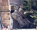 Déambulatoire crypte abbaye de mozac.jpg