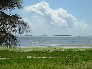 Dares Salaam beach