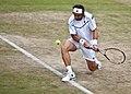 David Ferrer - 2011 Wimbledon(2).jpg