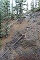 Davis Creek Park - panoramio (34).jpg