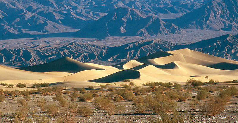 Death Valley Mesquite Sand Dunes.jpg