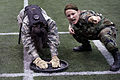 Defense.gov News Photo 100312-F-2120E-524.jpg