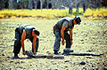 Defense.gov News Photo 970710-N-2240H-003.jpg