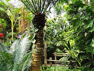 Denver Botanic Gardens Wikipedia