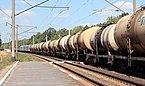 Desenka Railway Halt 2016 G2.jpg