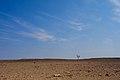 Desert (37049691633).jpg