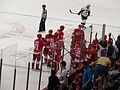 Detroit Red Wings Prevail, Detroit Red Wings vs. Pittsburgh Penguins, Joe Louis Arena, Detroit, Michigan (21703876945).jpg