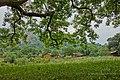 Dhodani,Panvel,Maharashtra - panoramio (11).jpg