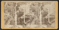 "Dingman's Creek, ""Soap Trough,"", by R. Newell & Sons.png"