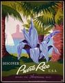 Discover Puerto Rico U.S.A LCCN98518614.tif