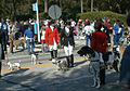 Dog Parade in Deland.jpg