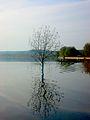 Dojran Lake 185.jpg