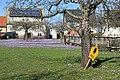 Drebacher Krokuswiesen 2H1A6770WI.jpg