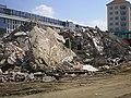 Dresden-Abriss Zwingergaststätte 2007.06.19.-015.jpg