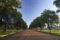 Dubbo NSW 2830, Australia - panoramio (30).jpg