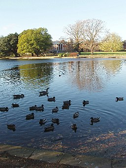 Ducks on the lake, Osterley House - geograph.org.uk - 620895